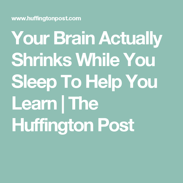 Your Brain Actually Shrinks While You Sleep To Help You Learn | The Huffington Post