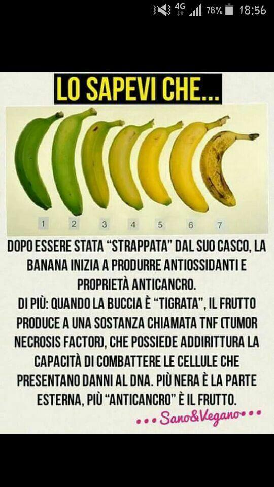 Lo Sapevi Che Rimedi Naturali Consigli Nutrizionali Salute E Benessere