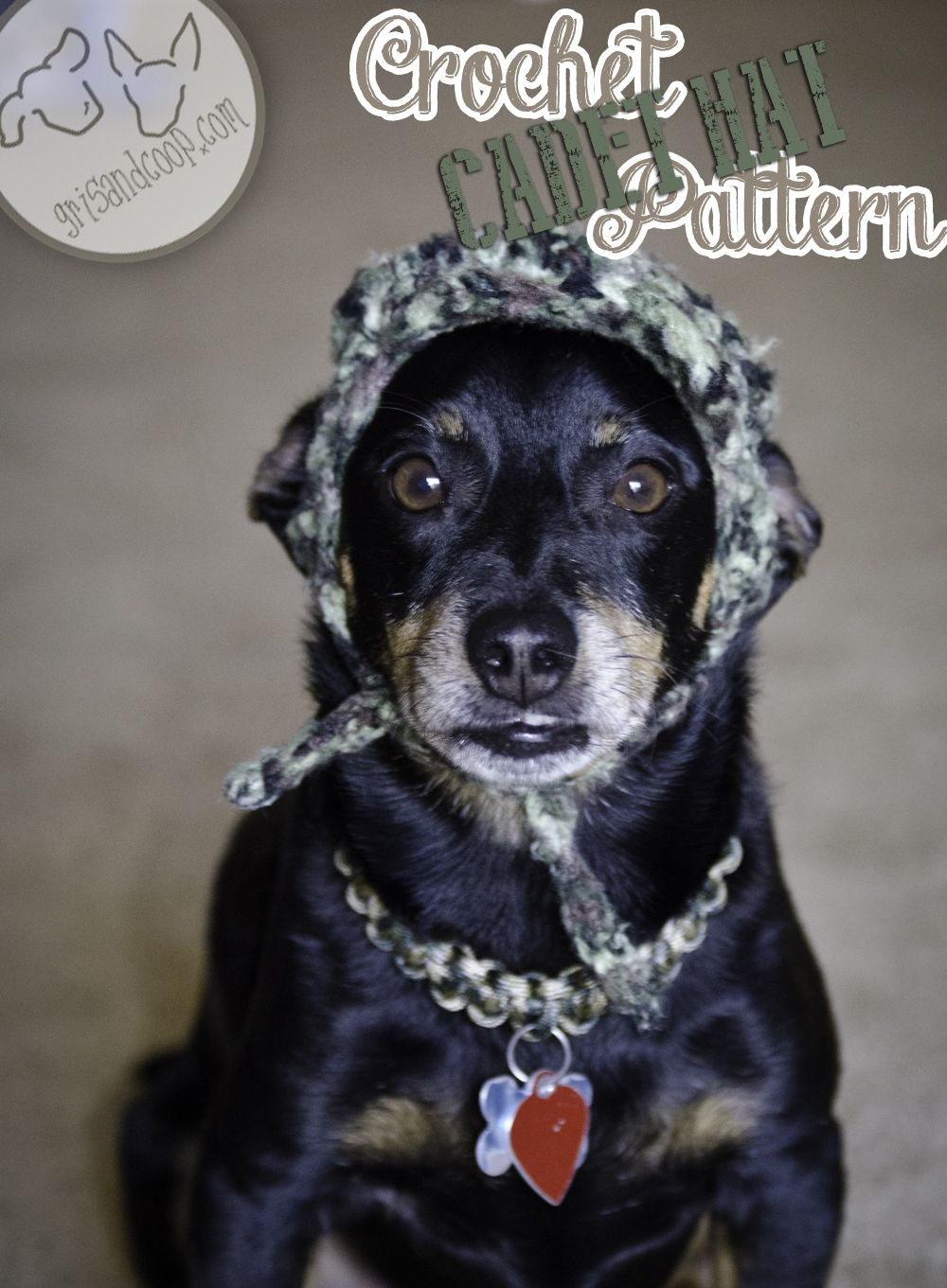 Dog cadet hat free crochet pattern knitted and crochet stuff dog cadet hat free crochet pattern bankloansurffo Gallery