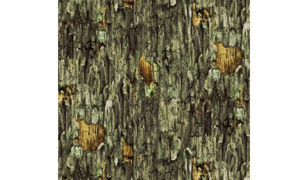 Hoo's Tree : Bark