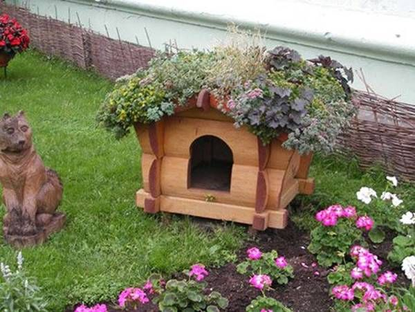 dog house decoration ideas bright accents for backyard designs also rh sk pinterest