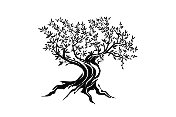 Vector Olive Tree Silhouette Tree Drawing Tree Silhouette Olive Tree