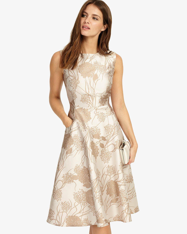 Phase eight white jane dress up rush