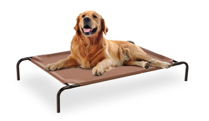 Frisco Steel Framed Elevated Pet Bed Brown Large Chewy Com
