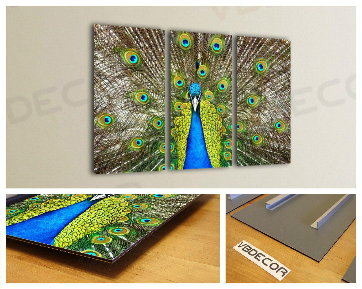 Peacock tail wall art multi panel split triptych aluminium composite