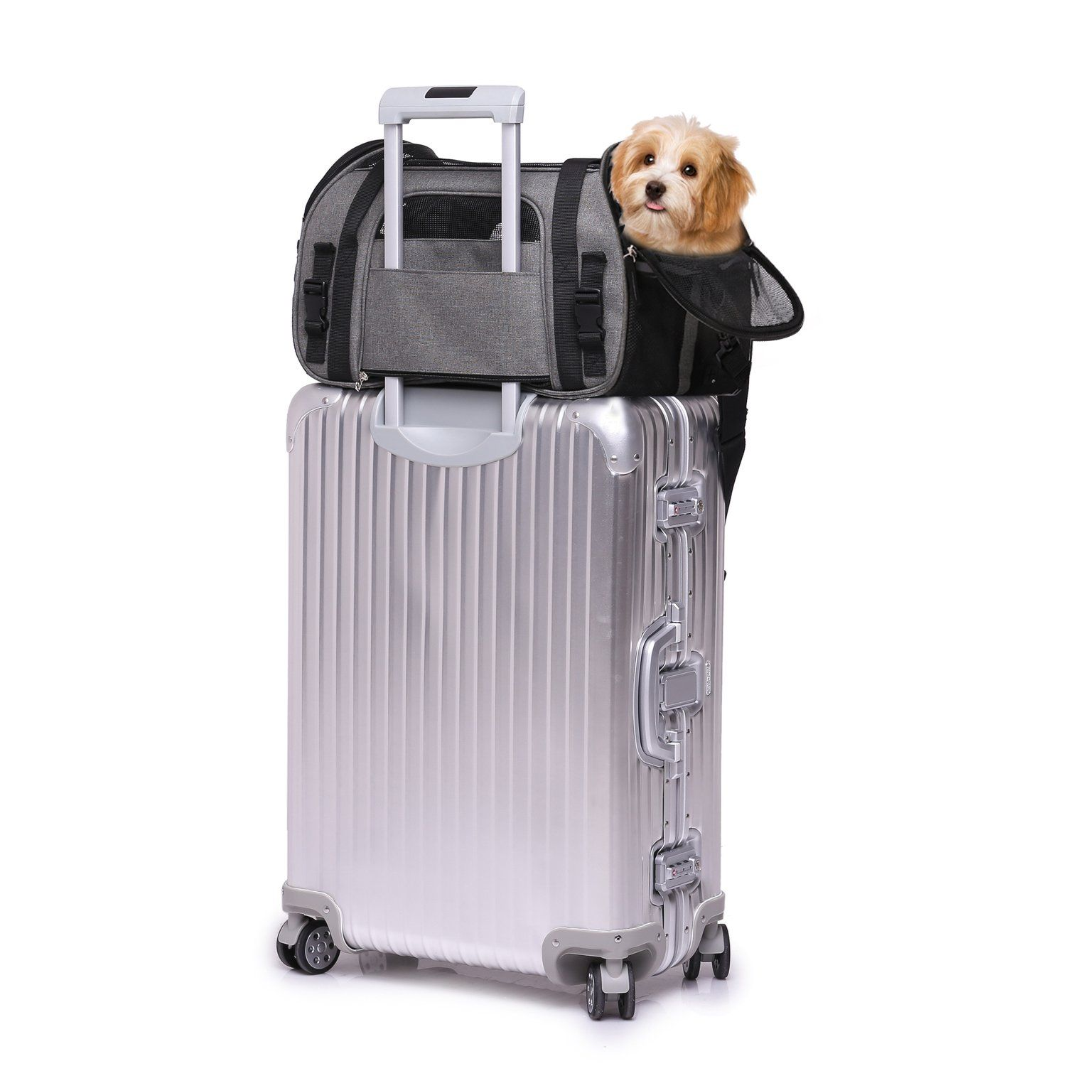 e198702982 Jespet Soft Sided Pet Carrier Comfort 17†for Airline Travel Portable Dog  Tote Bag for