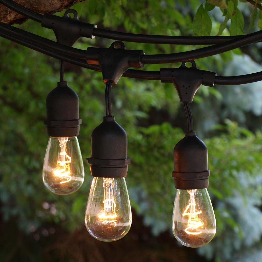 48 Ft Black Commercial Medium Suspended Socket String Light U0026 11S14 Clear  Bulbs · Patio LightingOutdoor ...
