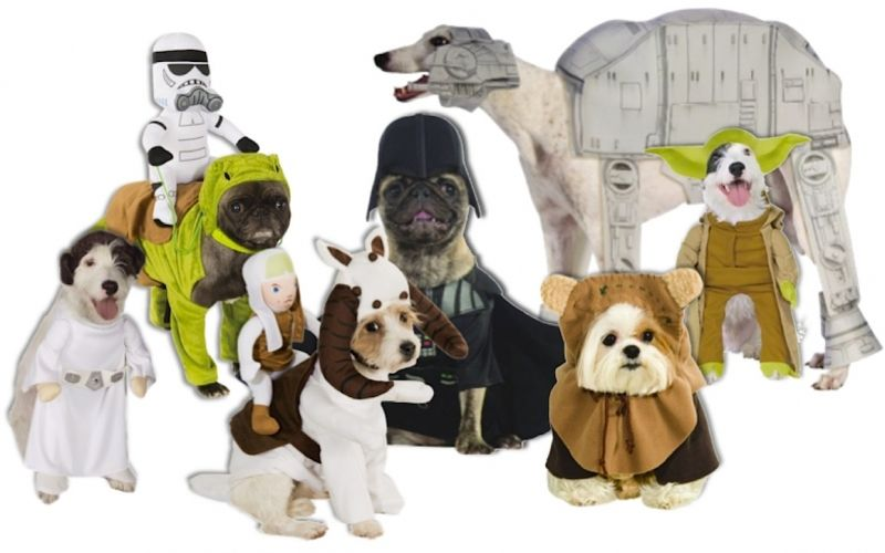 Best Star Wars Halloween Costumes for pets!