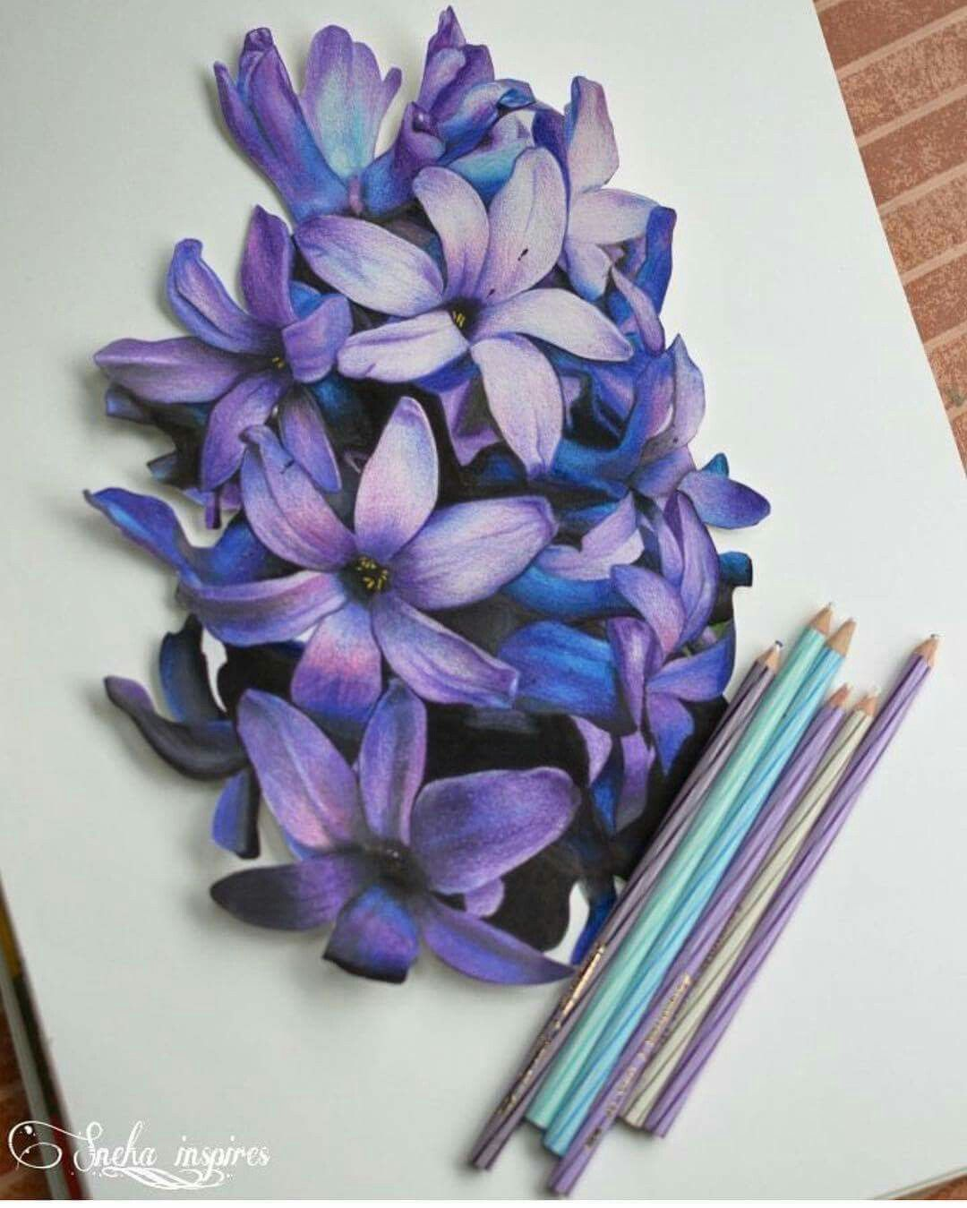 Indian Artist Sneha purple flower pencil drawing Color