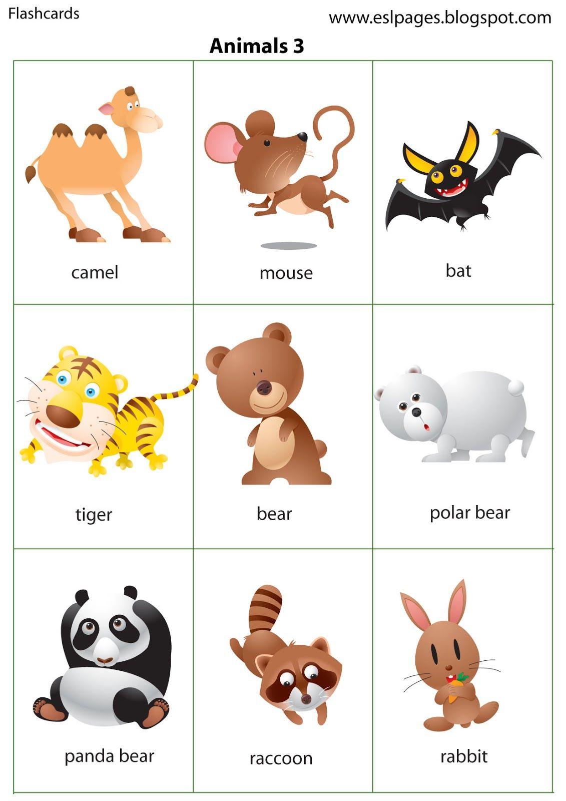 ocean animal description cards for kids printable pdf versions