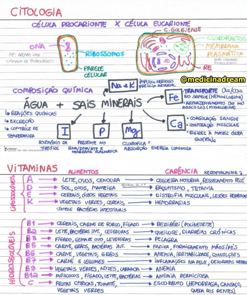 Estudo Das Celulas, Biologia Citologia, Citologia