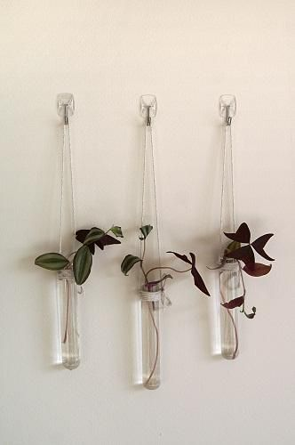 Command Tm Utensil Hooks Are Great To Hang Light Weight Decorations On The Wall Wall Vase Hanging Lights Single Flower