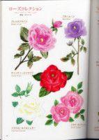 Gallery.ru / Фото #27 - Flower garden - simplehard