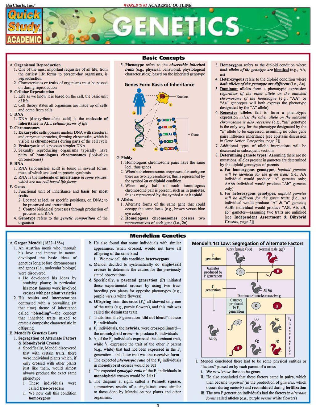 biology study guide meiosis ebook