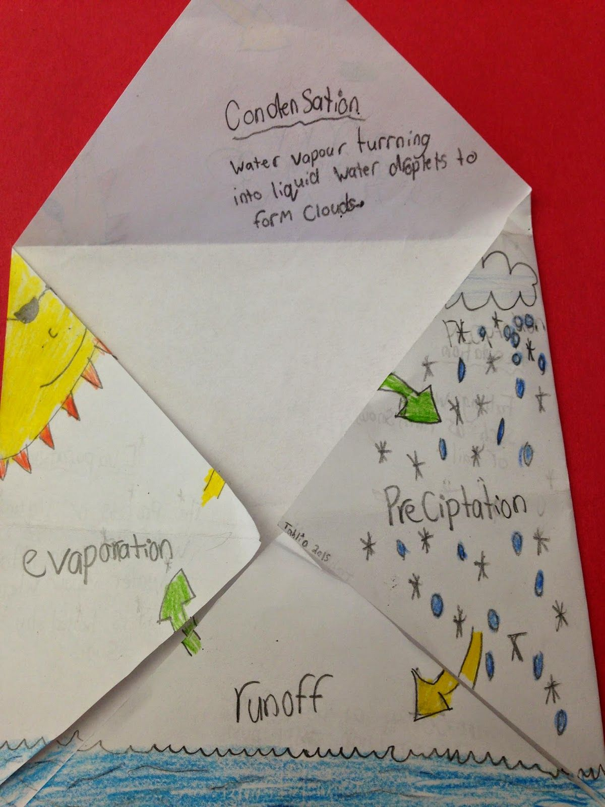 One teachers adventures water cycle foldable school stuff explore water cycle elementary schools and more robcynllc Gallery