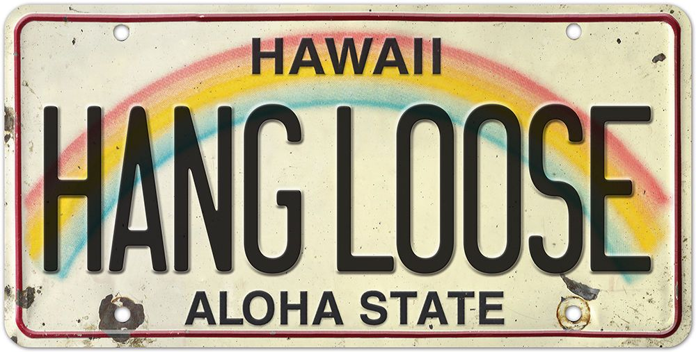 Details about 6in x 12in vintage hawaiian embossed license