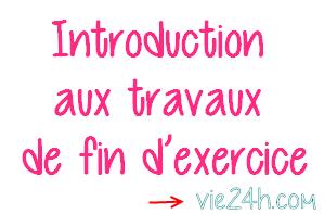 Introduction Aux Travaux De Fin D Exercice Vie24h Com Comptabilite Travail Organisation Maison