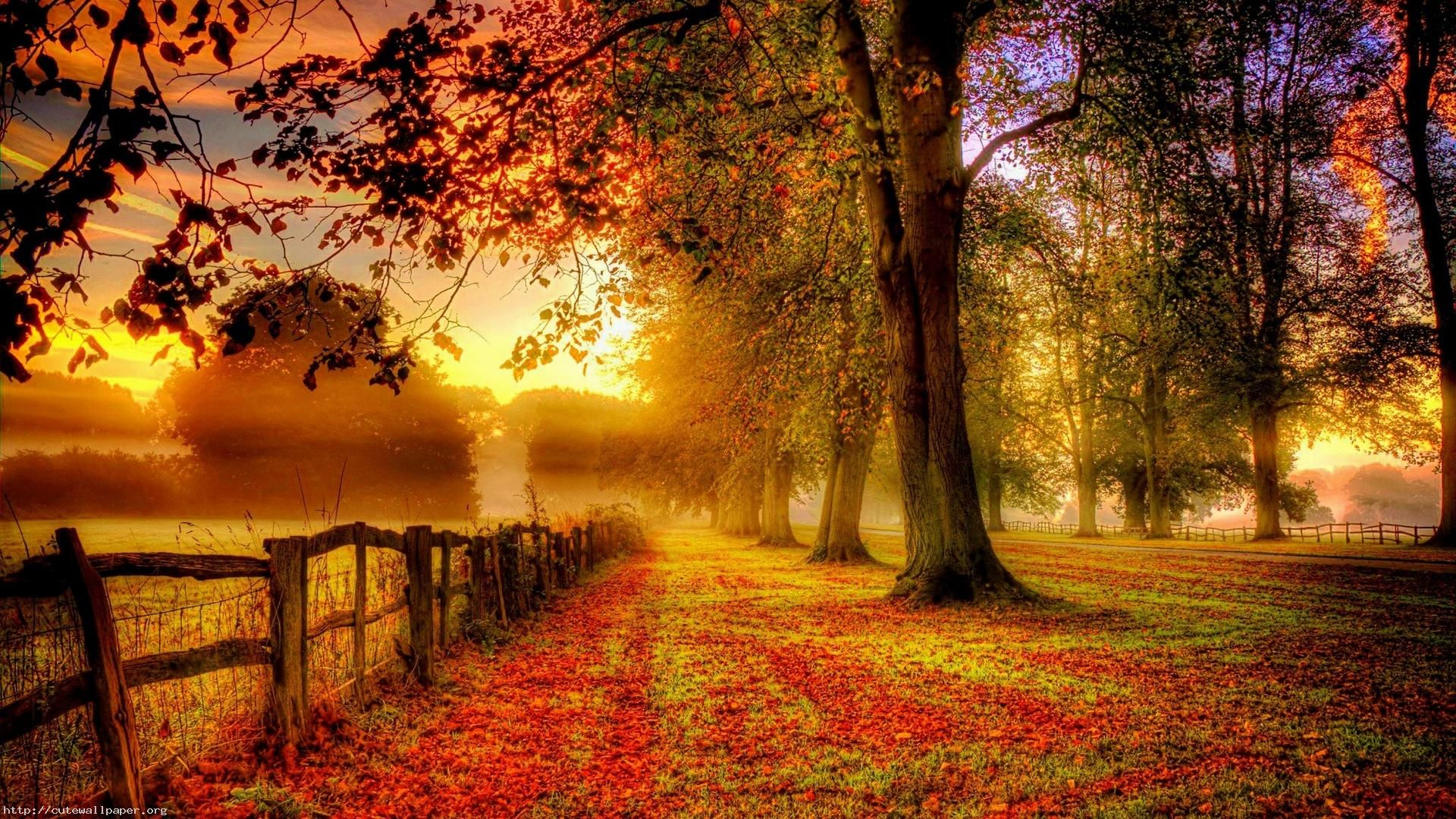Autumn Images Wallpapers And Backgrounds