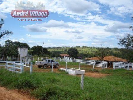 Fazenda - Bocaiuva - Montes Claros 341 Ha - R$ 1.705.000,00