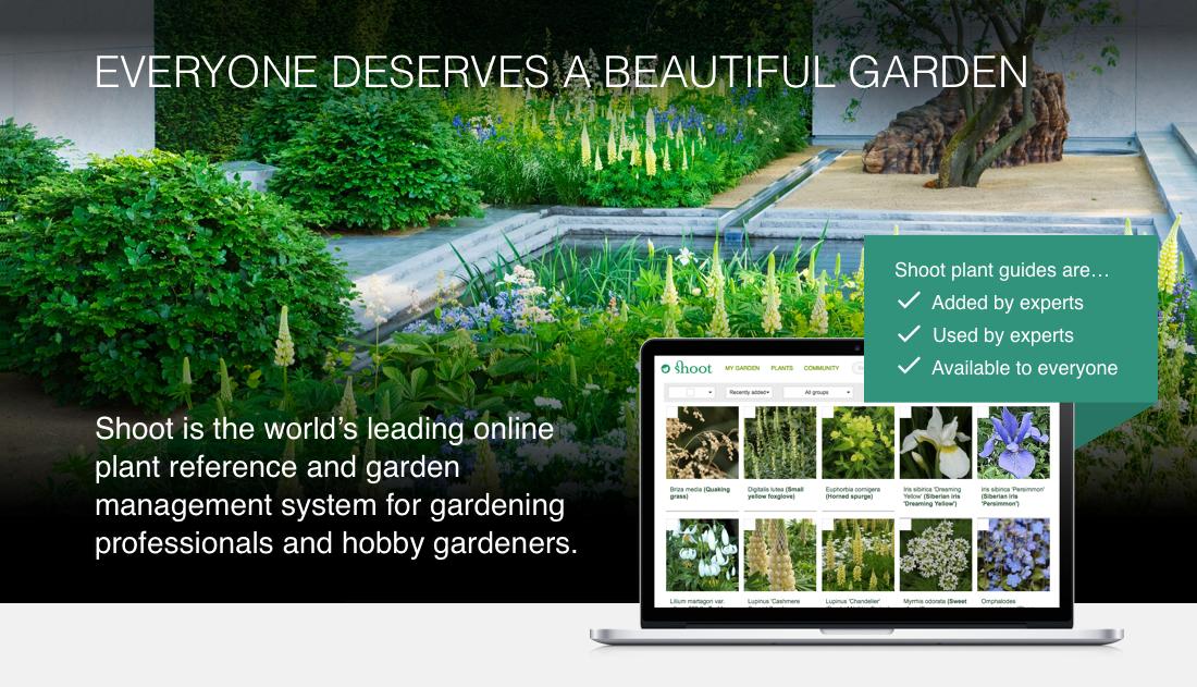 Gardening Tips Plant Care Advice Garden Design Ideas Plant Care Garden Design Gardening Tips
