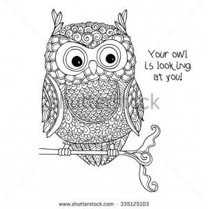 Coloring Book For Adult And Older Children Page With Cute Owl Outline Drawing In Zentangle Style