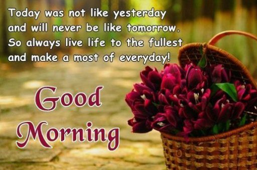 Always Live Life To The Fullest Everyday Good Morning Quotes For Best Friends Good Morning Quotes Good Morning Wishes Friends Morning Quotes For Friends