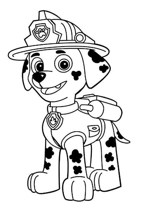 Pin by Rose Chapman on coloring pages   Pinterest   Paw patrol ...