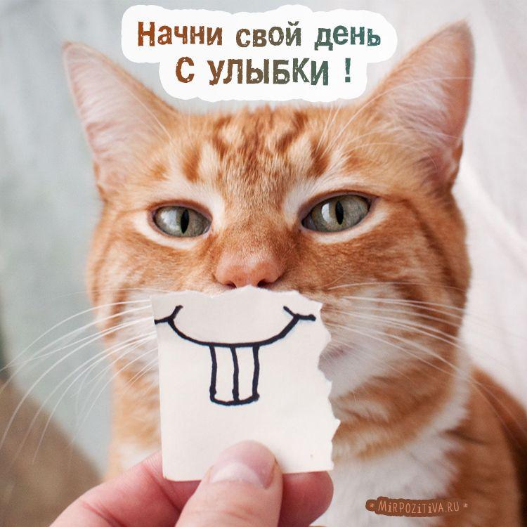 Начни свой день с улыбки картинки красивые