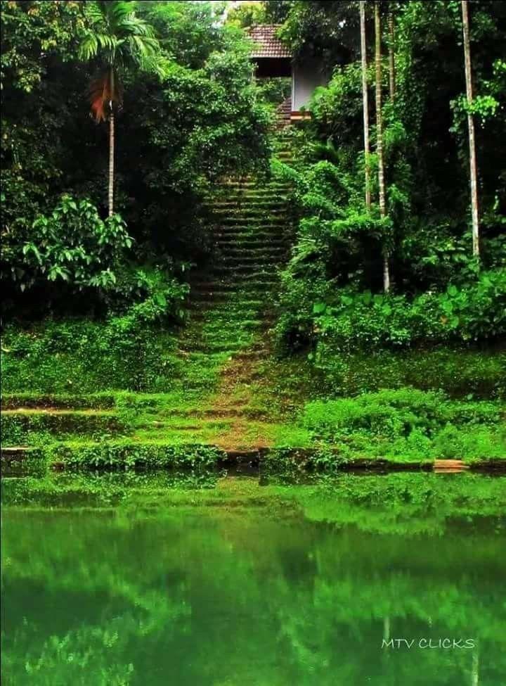 Kerala Nature Photography Beautiful Photography Nature Beautiful Nature