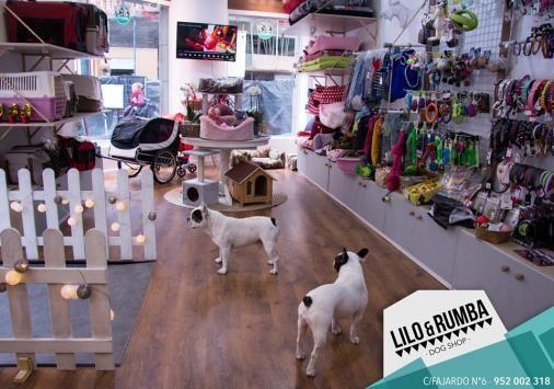Srperro Com La Guia Para Animales Urbanos Peluquerias Caninas
