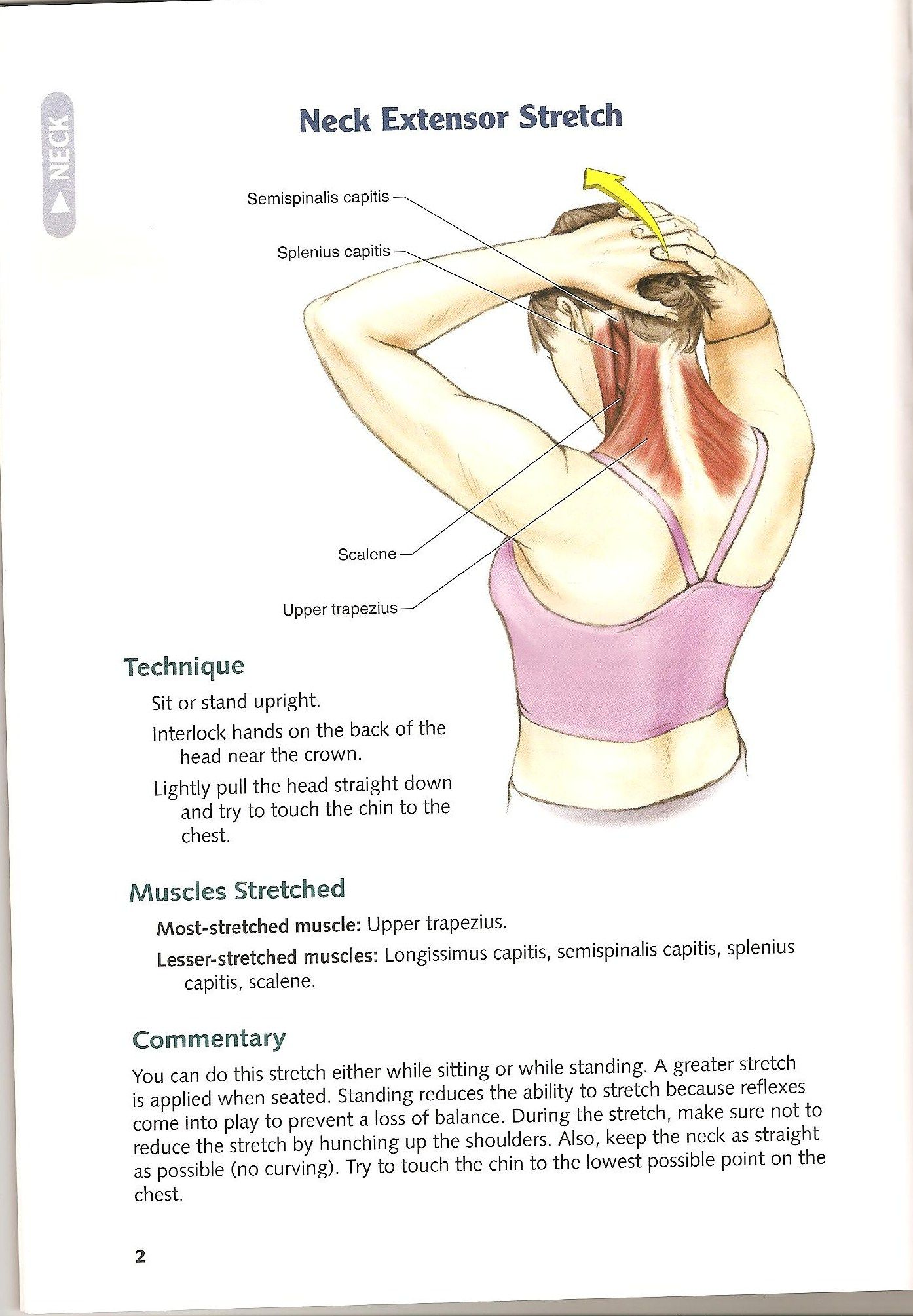 Posterior Neck Stretch Celtic Knots Massage With Images