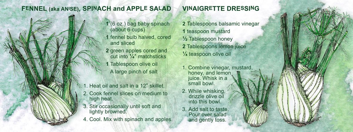 Fennel Aka Anise Spinach And Apple Salad By Rikki Asher Apple