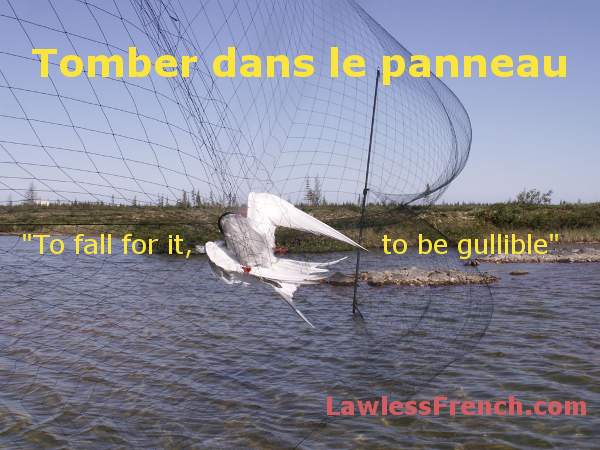 Tomber dans le panneau - French expression  http://www.lawlessfrench.com/expressions/tomber-dans-le-panneau/