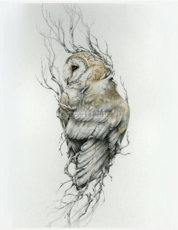 Barn owl 16 x 20  fine art print owl art  drawing by NestandBurrow