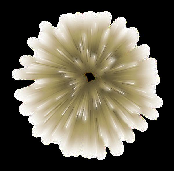 سكرابز العاب نارية للعيد سكرابز مفرقعات العيد سكرابز العاب نارية بدون تحميل Dandelion Plants Flowers