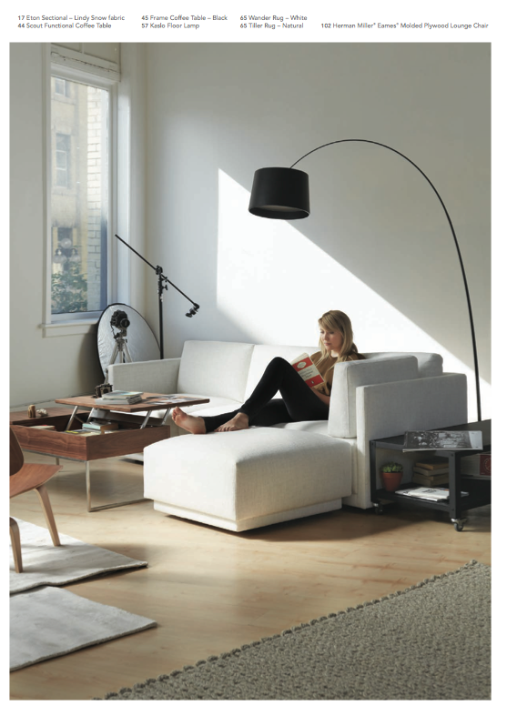 Scout Functional Coffee Table Eton sectional Kaslo lamp