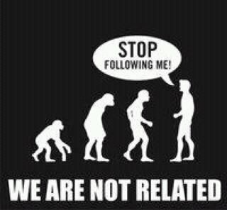 Image result for we did not come from monkeys