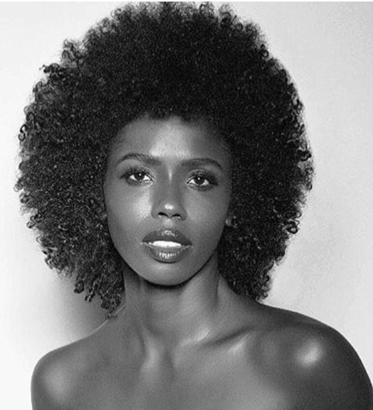 ***Try Hair Trigger Growth Elixir*** ========================= {Grow Lust Worthy Hair FASTER Naturally with Hair Trigger} ========================= Go To: www.HairTriggerr.com =========================        Gorgeous Curly Fro!!