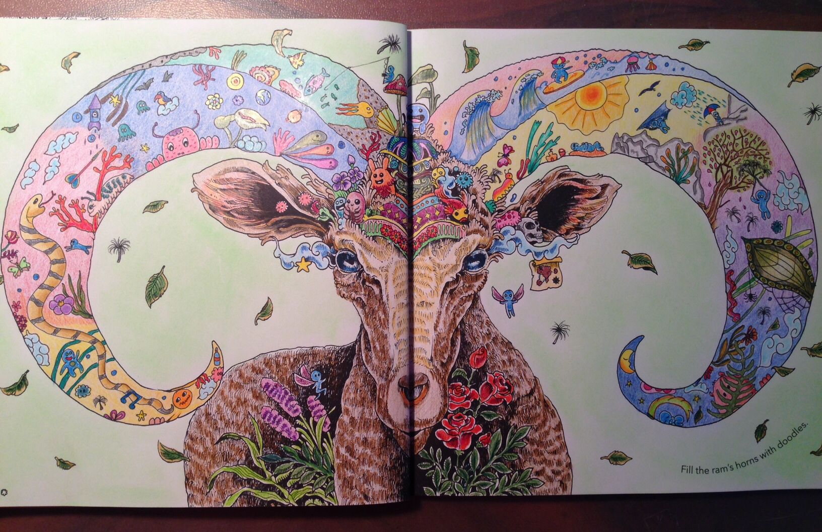 Animorphia Kerby Rosanes Coloured By Agnes Perger Adult ColoringColouringColoring BooksJohanna