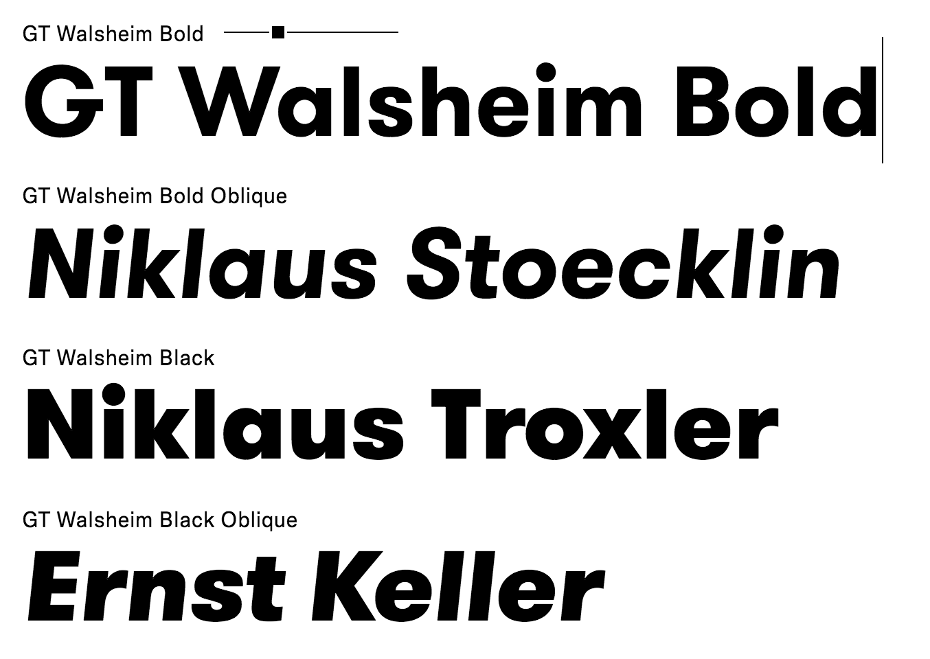 GT Walsheim Web bold_its nice that title font | typeface