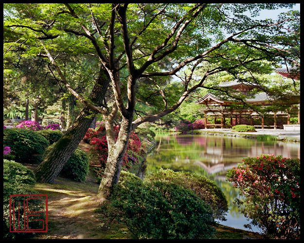 Temple gardens of kyoto japan byodo in the phoenix temple a 101 gardens outdoor for Garden of the phoenix
