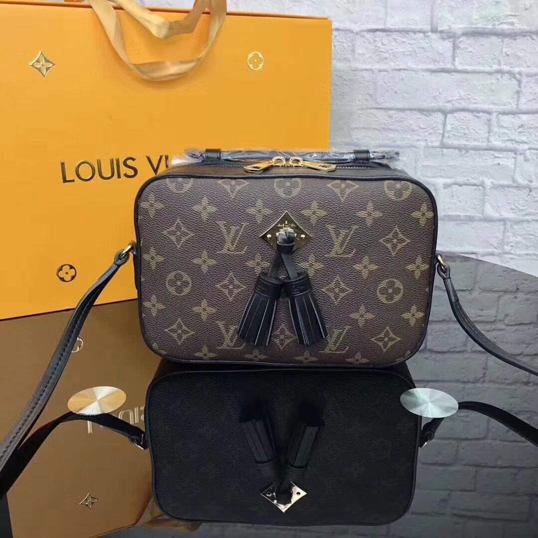 8c45d6e301e3 Louis Vuitton lv small cross body zippy camera bag with tassels ...
