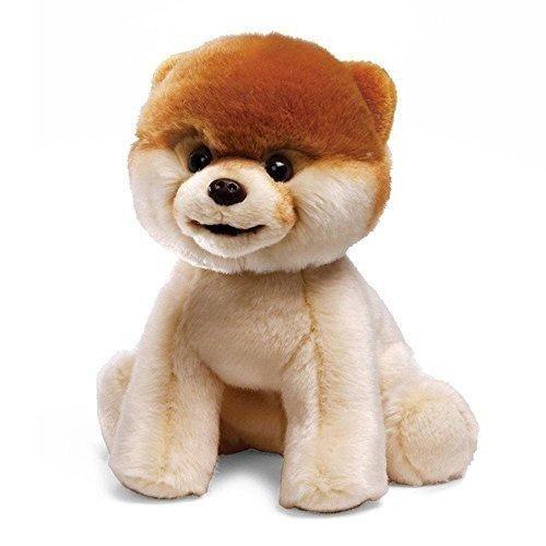 Best Pomeranian Brown Adorable Dog - 382d9517ea30e6d1be79fcaaea6e431a  HD_743148  .jpg