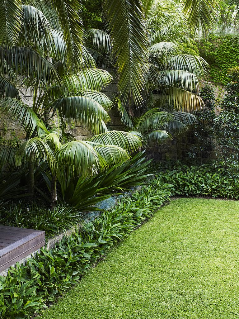 Lawn With Mixed Planting Tropical Garden Design 400 x 300