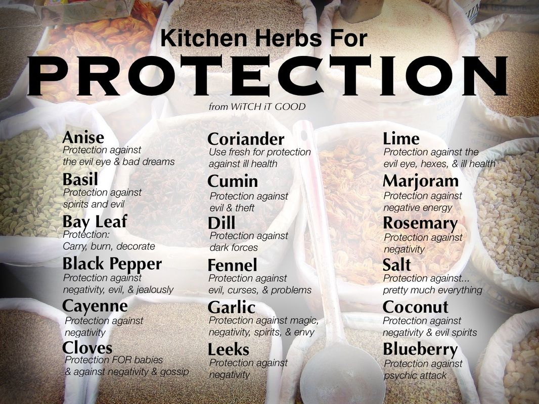 Kitchen Herbs for Protection - Witch Ot Good | The Magic of Plants