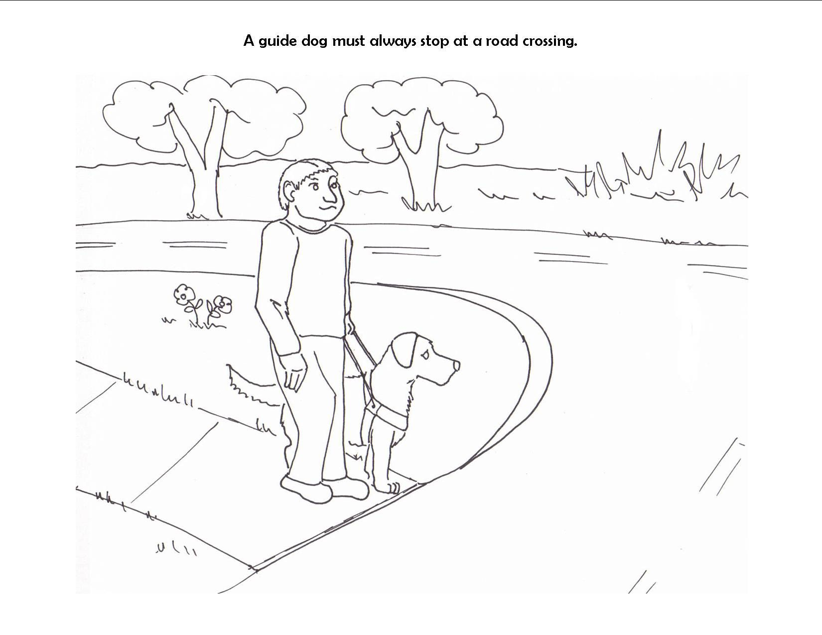 Pin By Megan Viloria On Animal Aided Education Kids Pages Guide Dog Dog Coloring Page