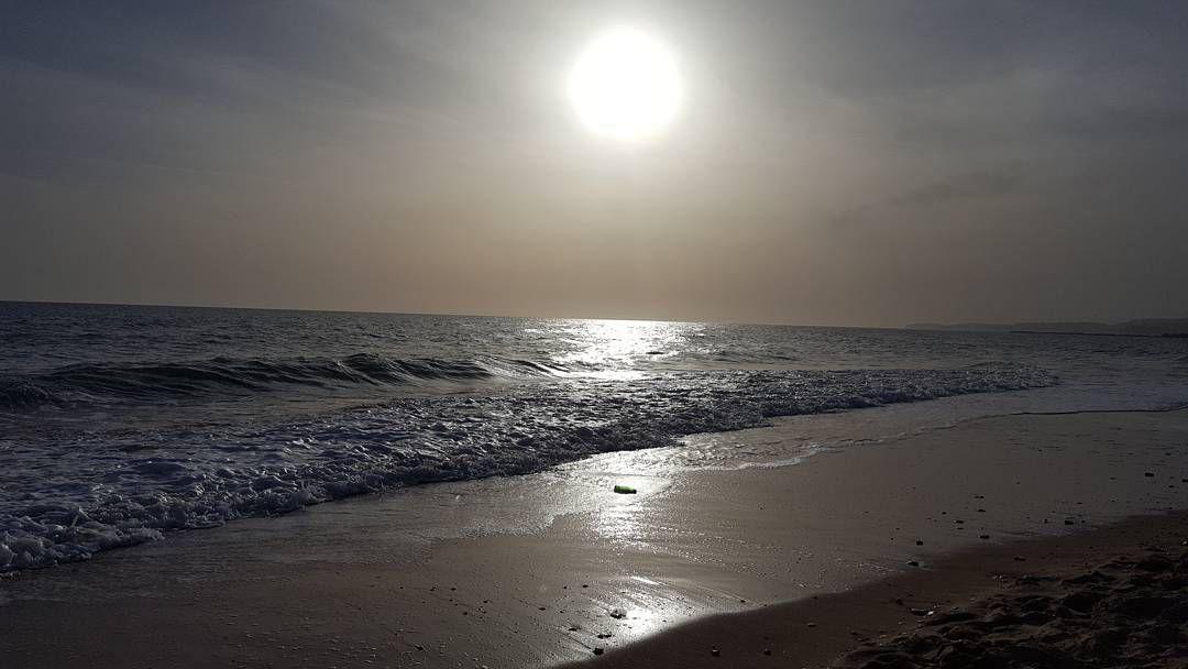 Ah oggi si vota per questo! #trivellatuasorella #milano#roma #catania #palermo #sicilia #sanleone #oceanomare #firenze #napoli #venezia #cagliari #verona #rimini #riccione #torino #parma #bologna #genova #udine #bari #reggiocalabria #glass #occhialidasole #latina #taormina #vicenza #cesena #padova by ilerobinssss