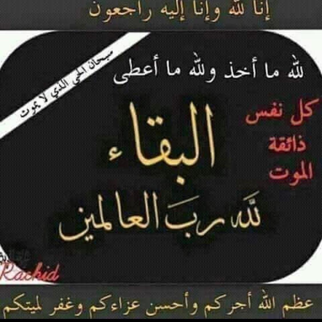 Pin By Slyn1s On صور خاص بي الكاميرا Arabic Calligraphy