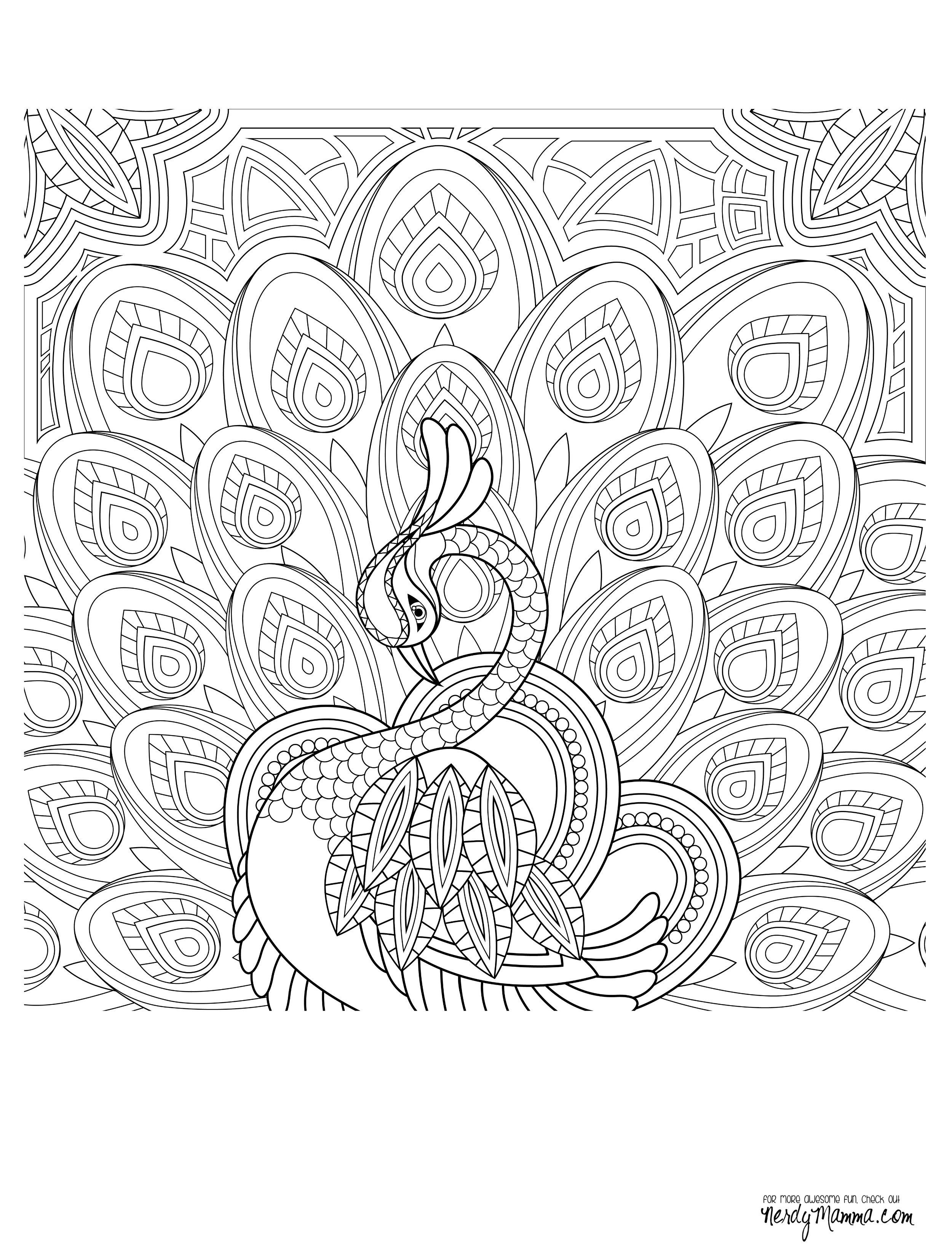 coloring pages peacock Peacock Feather Coloring pages colouring adult detailed advanced  coloring pages peacock