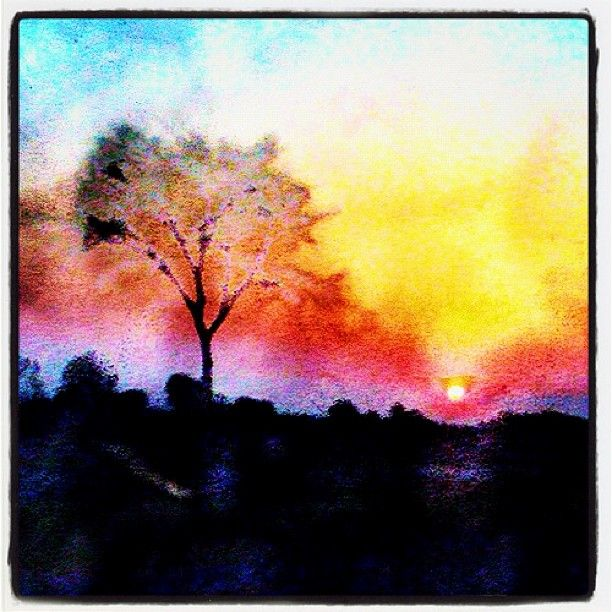 Watercolor Sunrise Frankyboy1 Webstagram With Images Tree